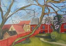Magnoliatræ i museumshaven Ribe