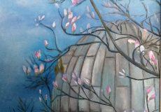 nærbillede af magnolia i museumshaven